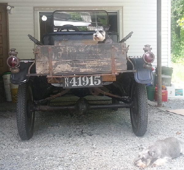1915 Model T Pickup. Sometimes it takes more than one guard dog to keep the Model T safe! -- John Aldrich